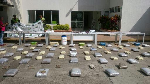 Policía incauta 300.000 dosis de marihuana en Cartago